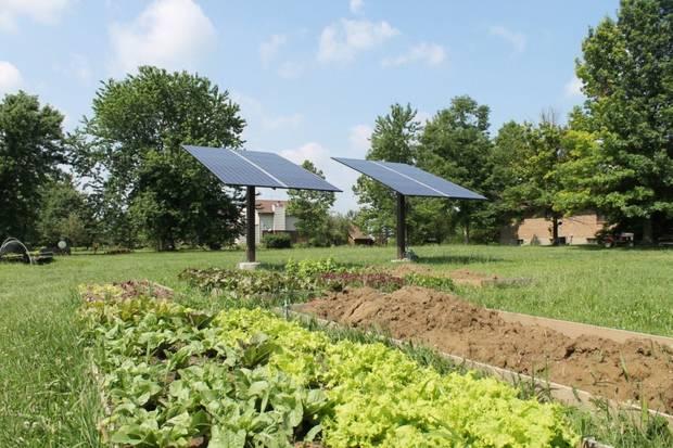 Garden Solar 1